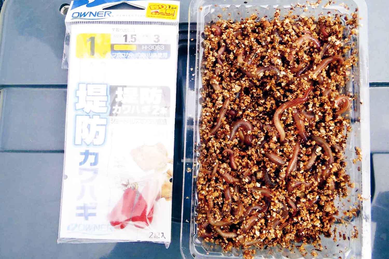食卓直行カワハギ大蔵海岸10