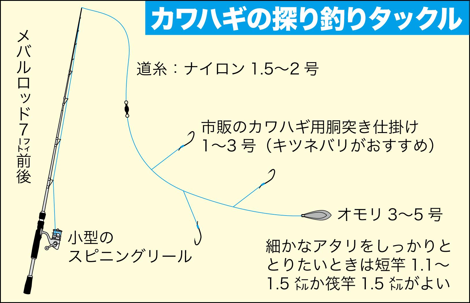 食卓直行カワハギ大蔵海岸16