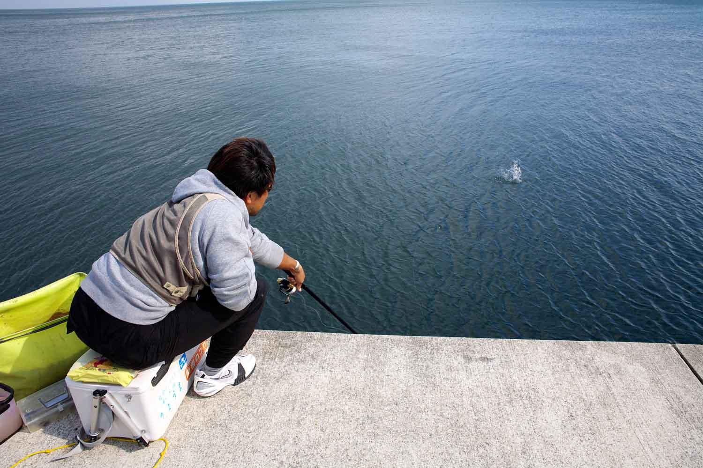 チヌ紀州釣り メンディング1