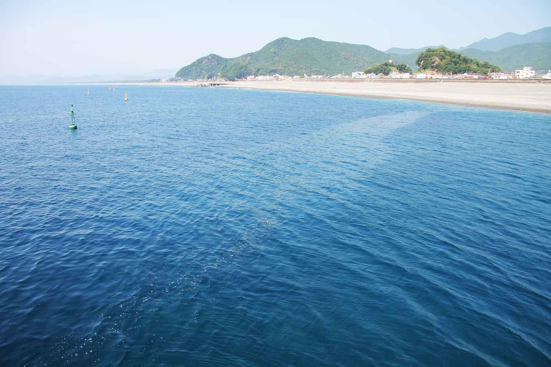 年末年始大釣り七里御浜、尾鷲港8