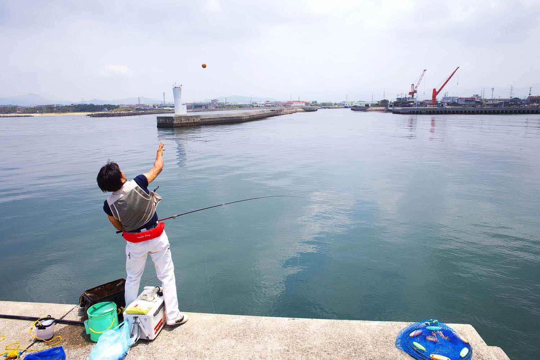QA紀州釣り 底荒い6