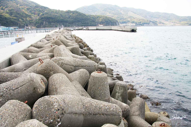 小島漁港3