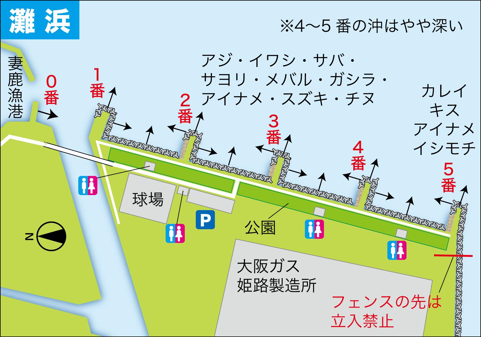 フィールドガイド 灘浜2