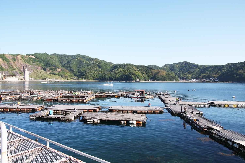 由良海つり公園3