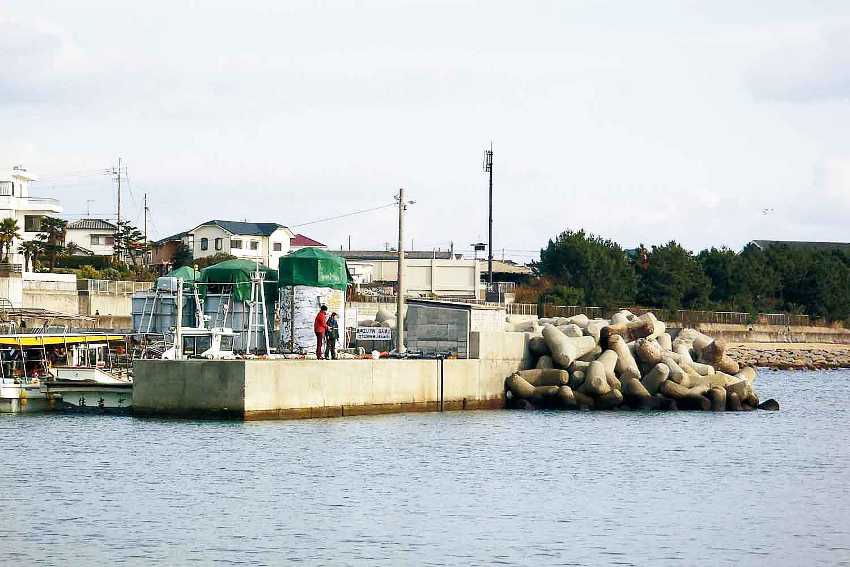 優良サブスポット5魚住漁港11