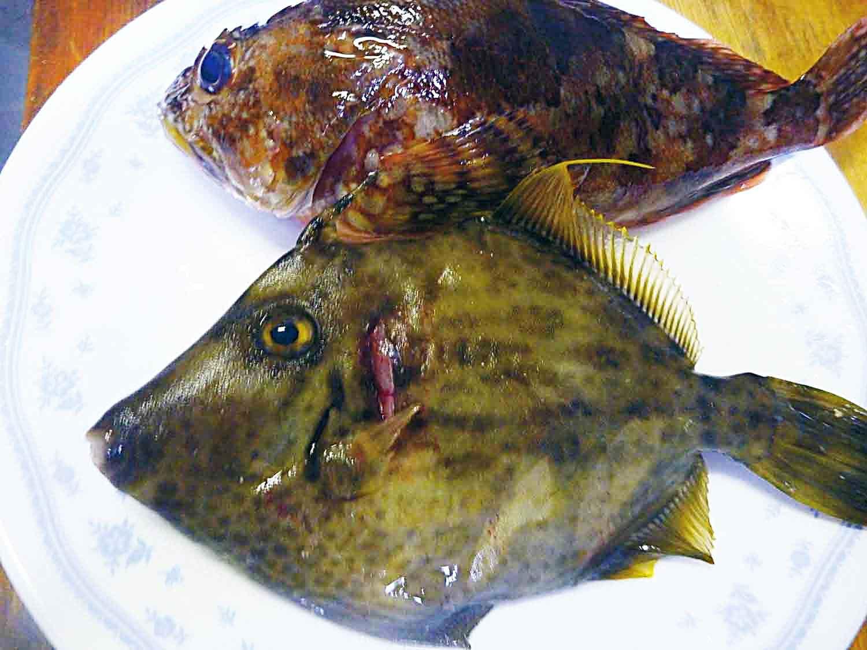 釣魚鍋料理2