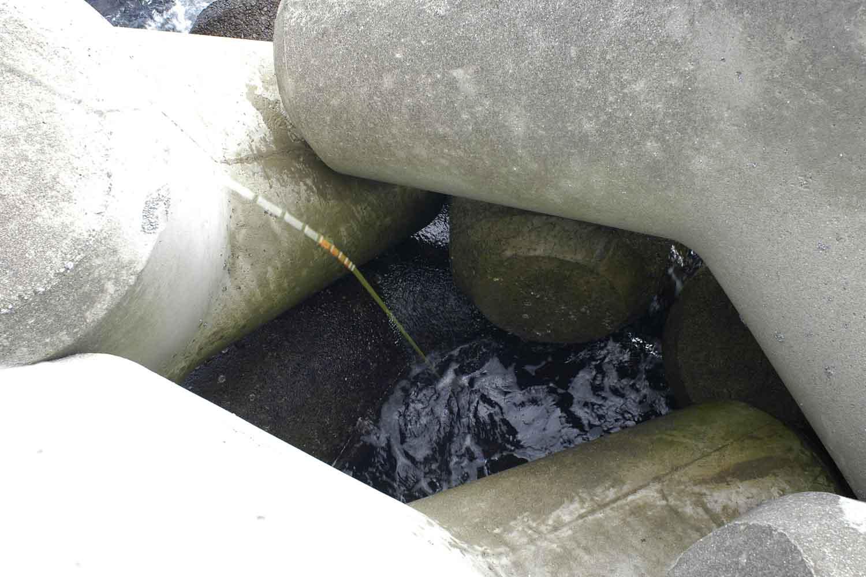 穴釣り入門10