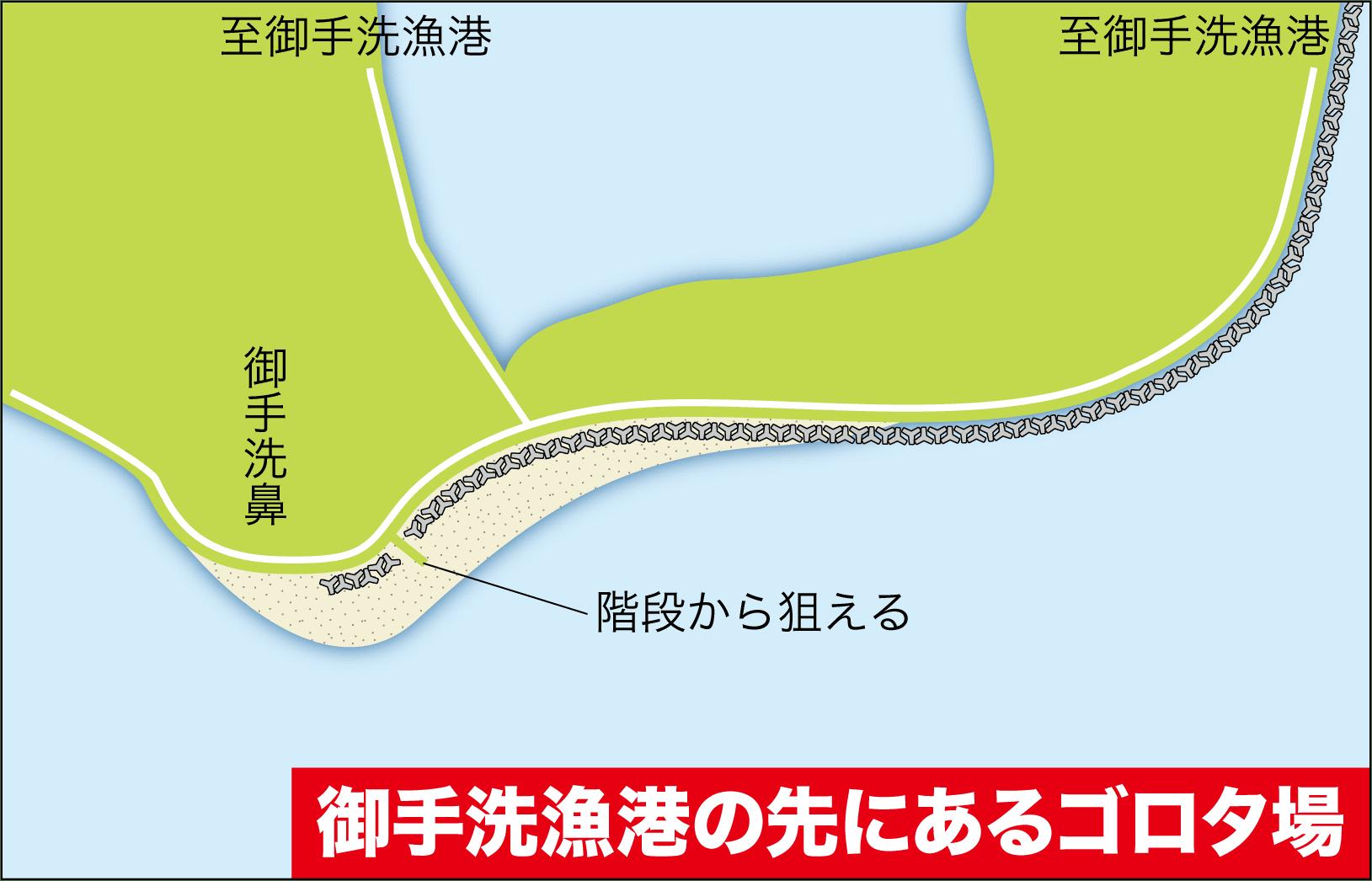 ライブショット17興居島10