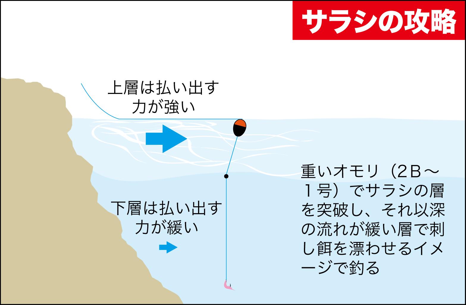 春グレQA口太グレ6
