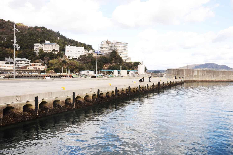 田ノ浦漁港5