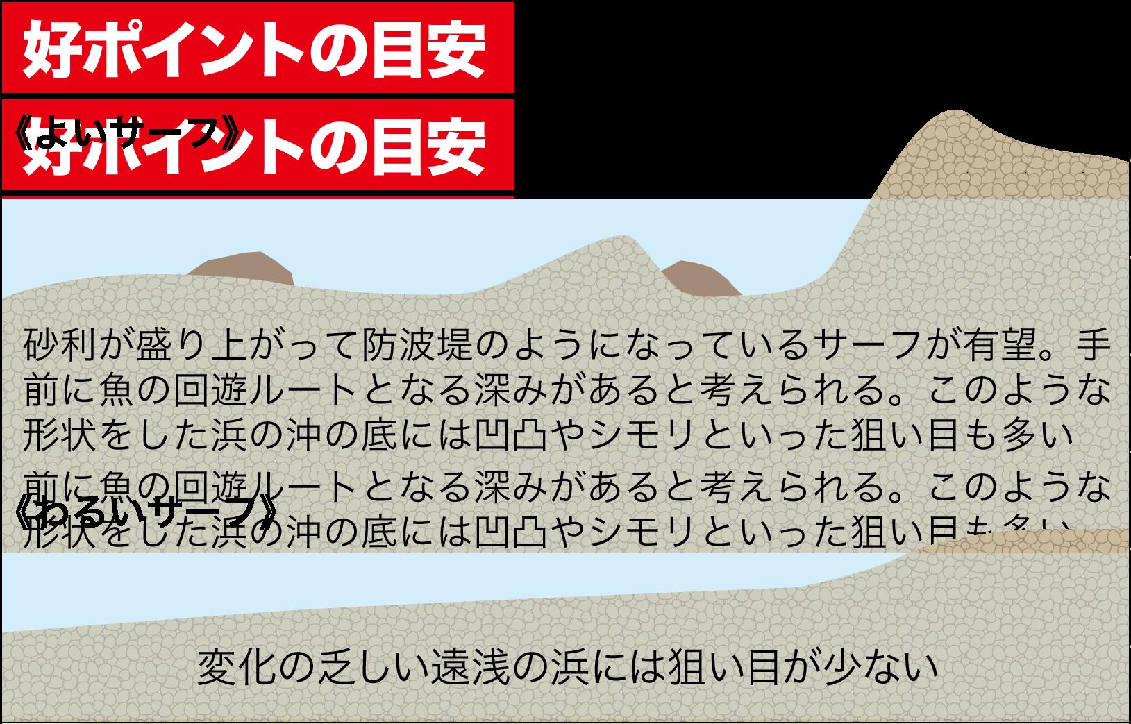 七里御浜カゴ釣りプラン2