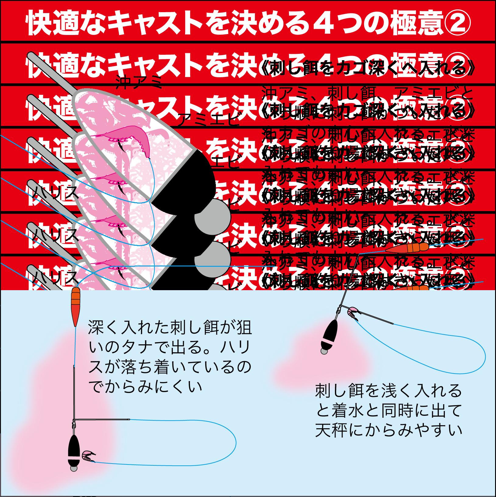 七里御浜カゴ釣りプラン5