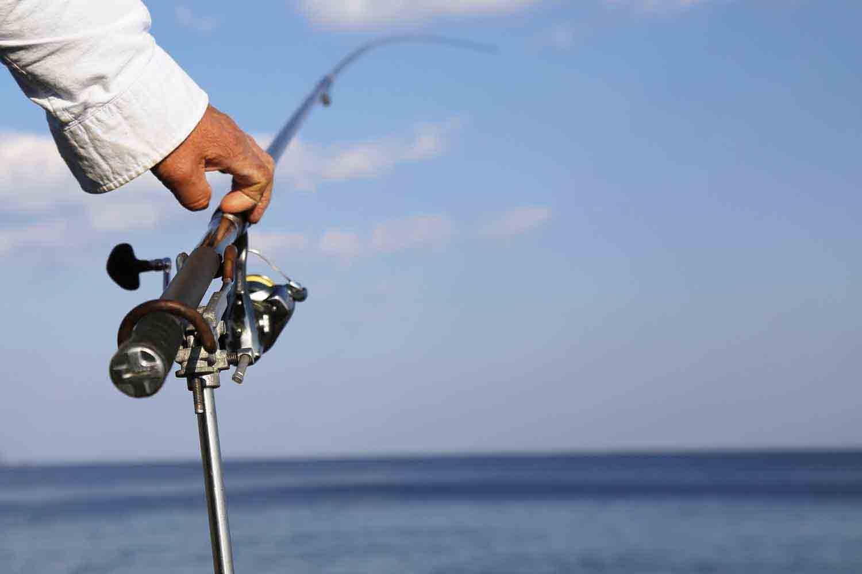 七里御浜カゴ釣りプラン15