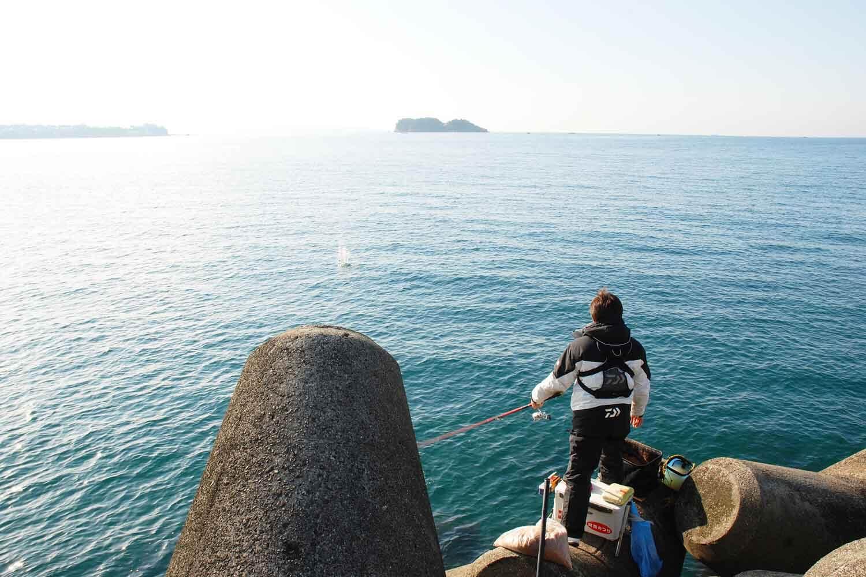 チヌ紀州釣り河口1