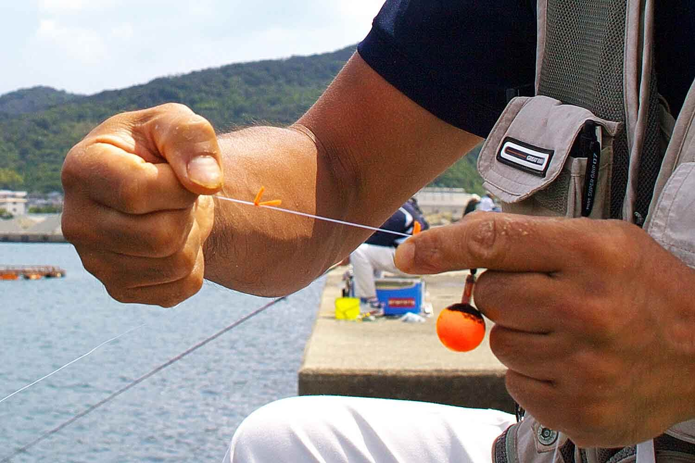 チヌ紀州釣り河口6