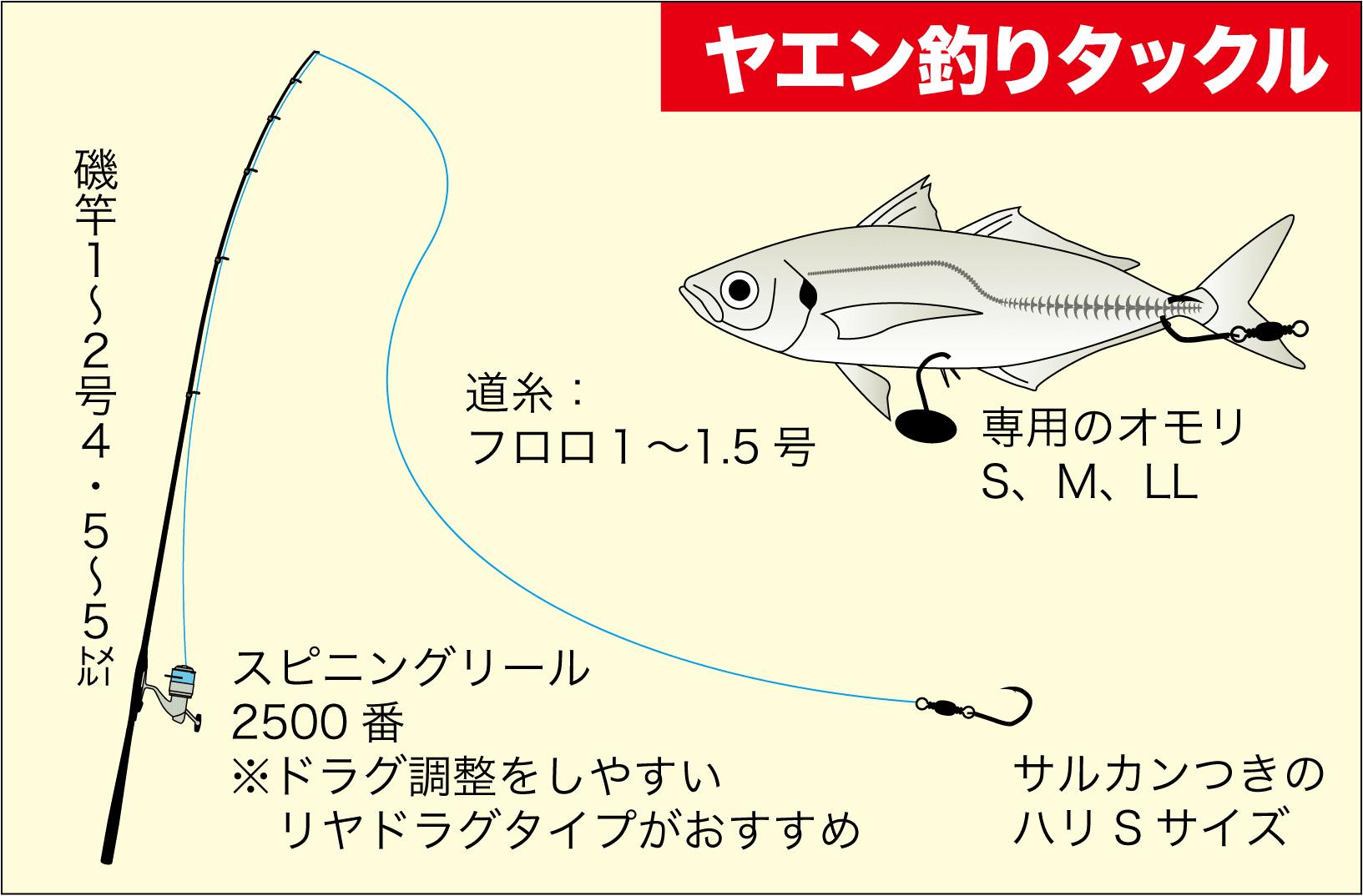 アオリイカヤエン大型8