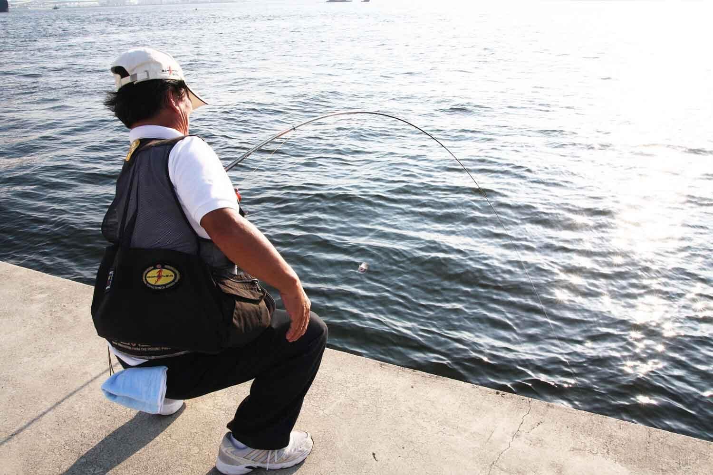 スズキエビ撒き釣り必釣法6