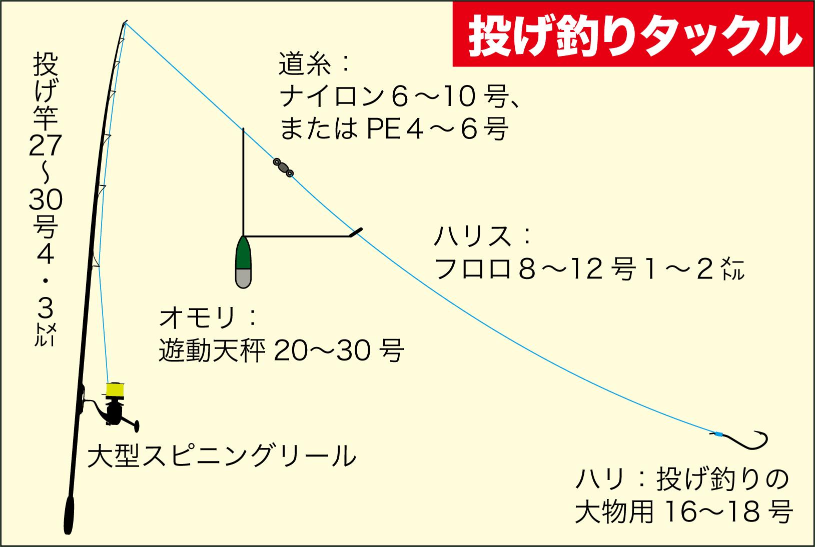 カゴ釣りマダイ10