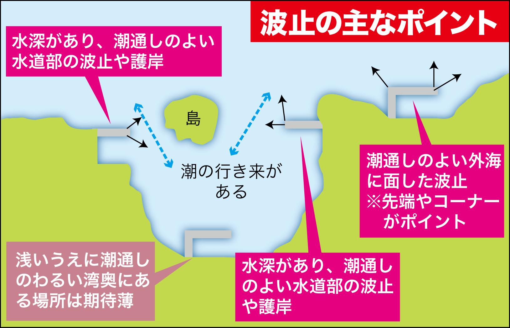 若狭投げマダイ10