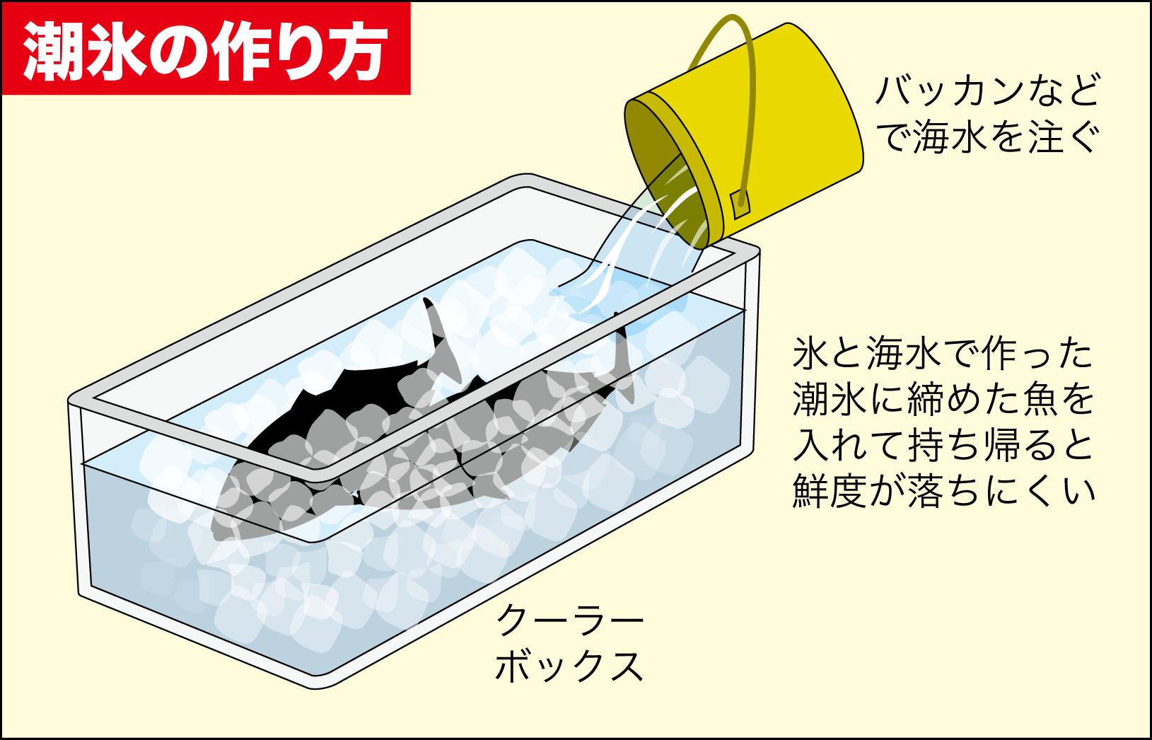大サバソウダガツオサビキ10