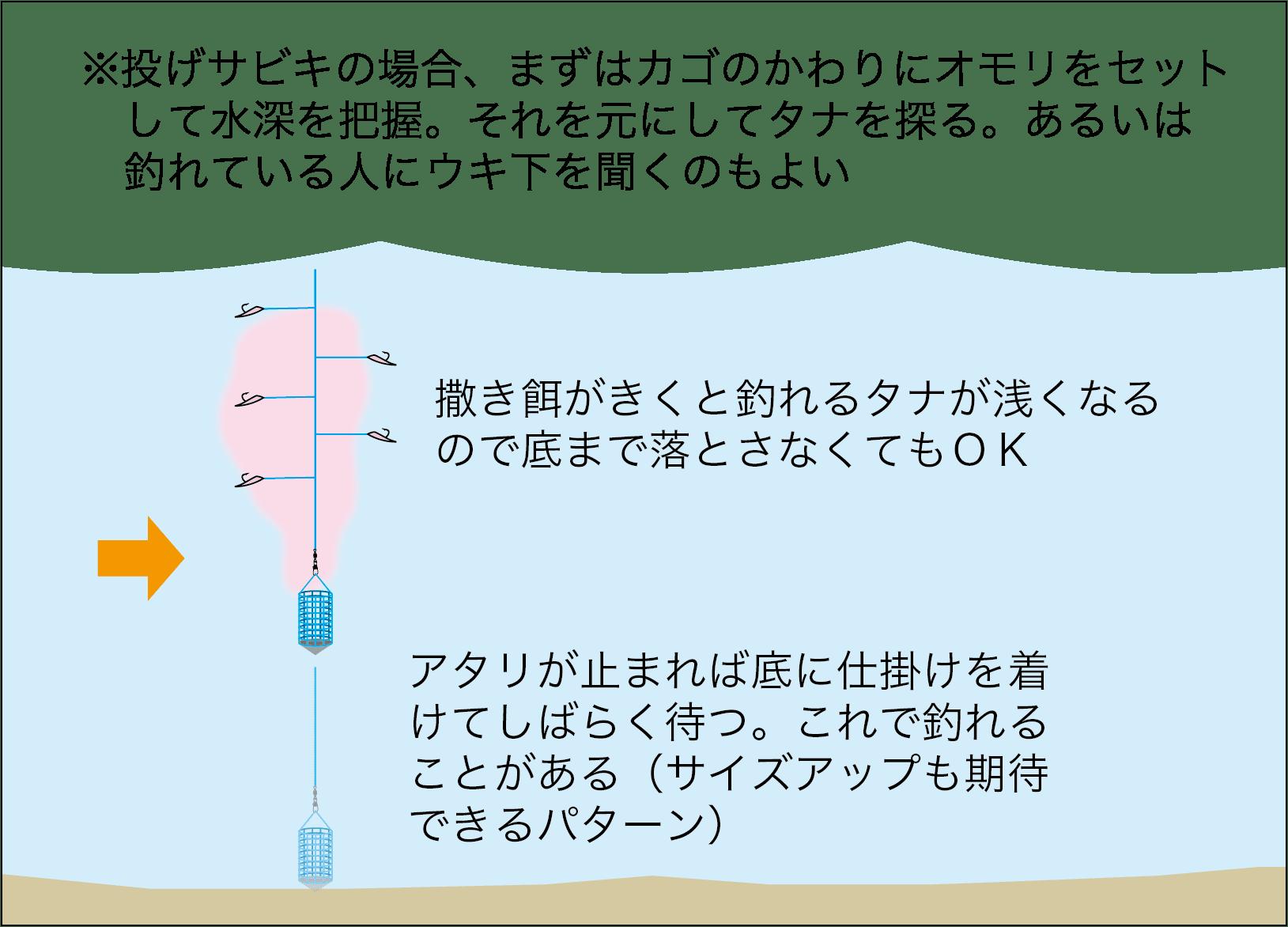 サビキ釣りスズナリ3-11
