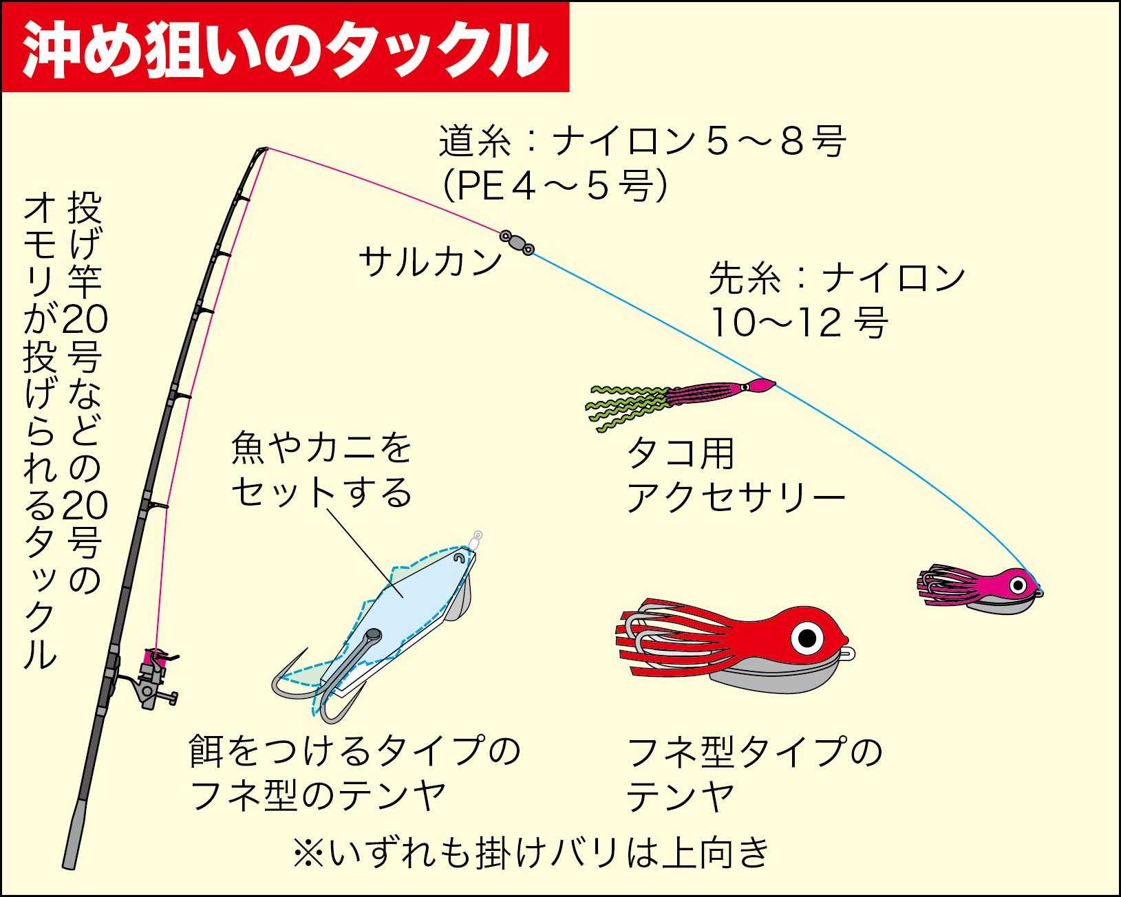 タコ 釣り シーズン