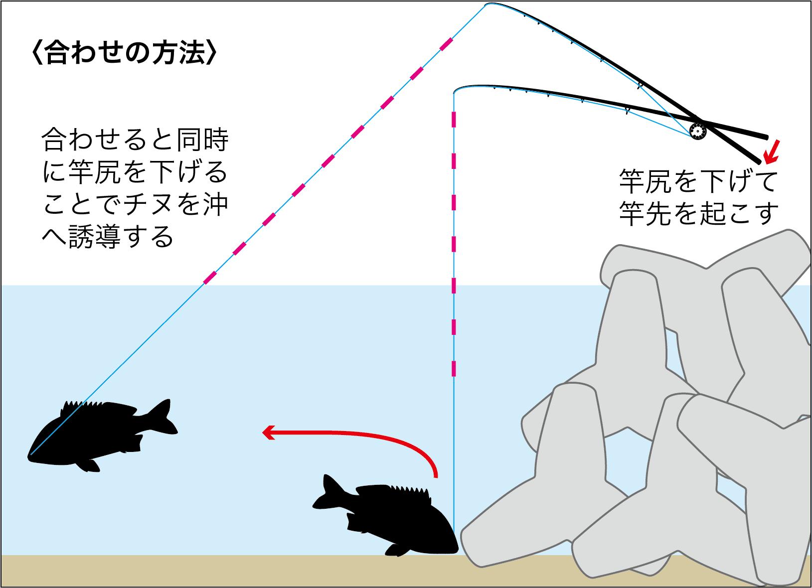 チヌ前打ち岩ガニ以外8