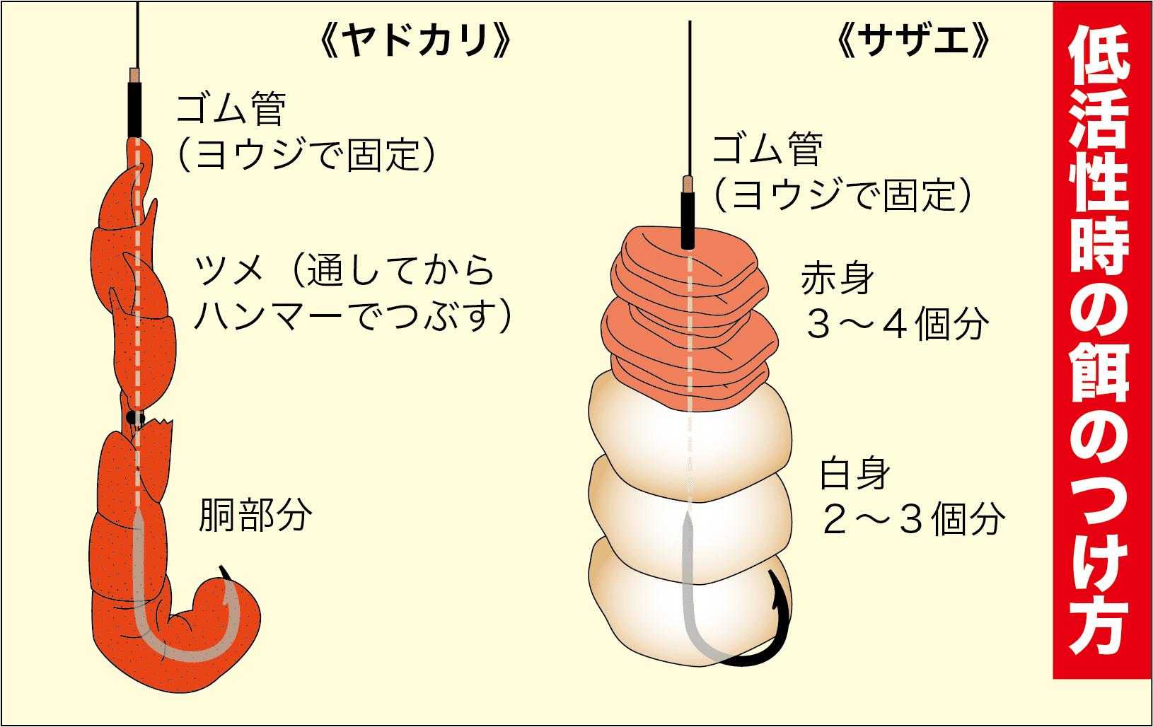 大判イシダイ工夫16