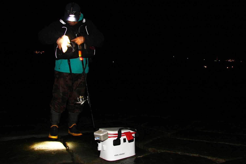 貝塚人工島半夜釣り11