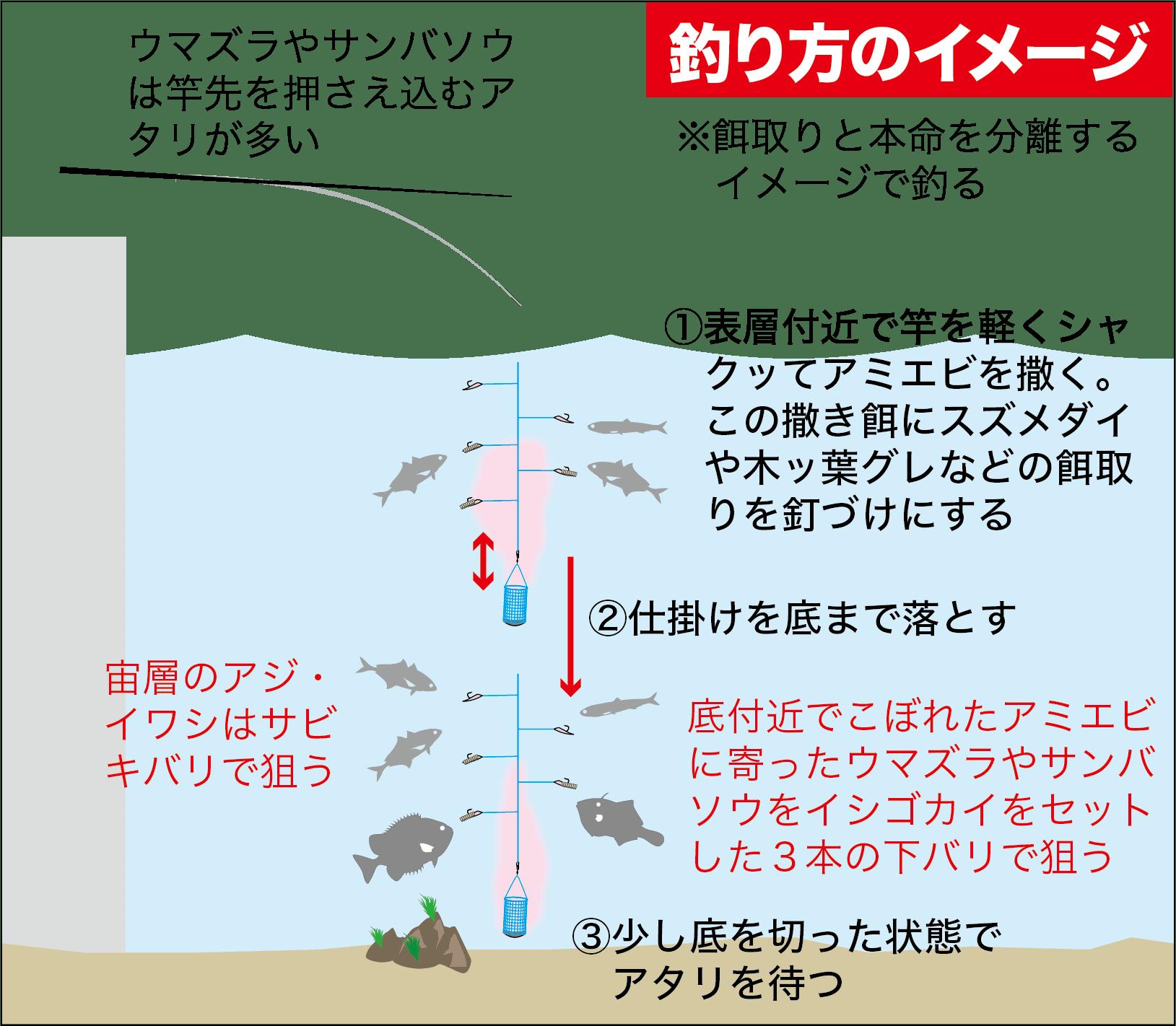 サビキ釣りスズナリ6都志港-6