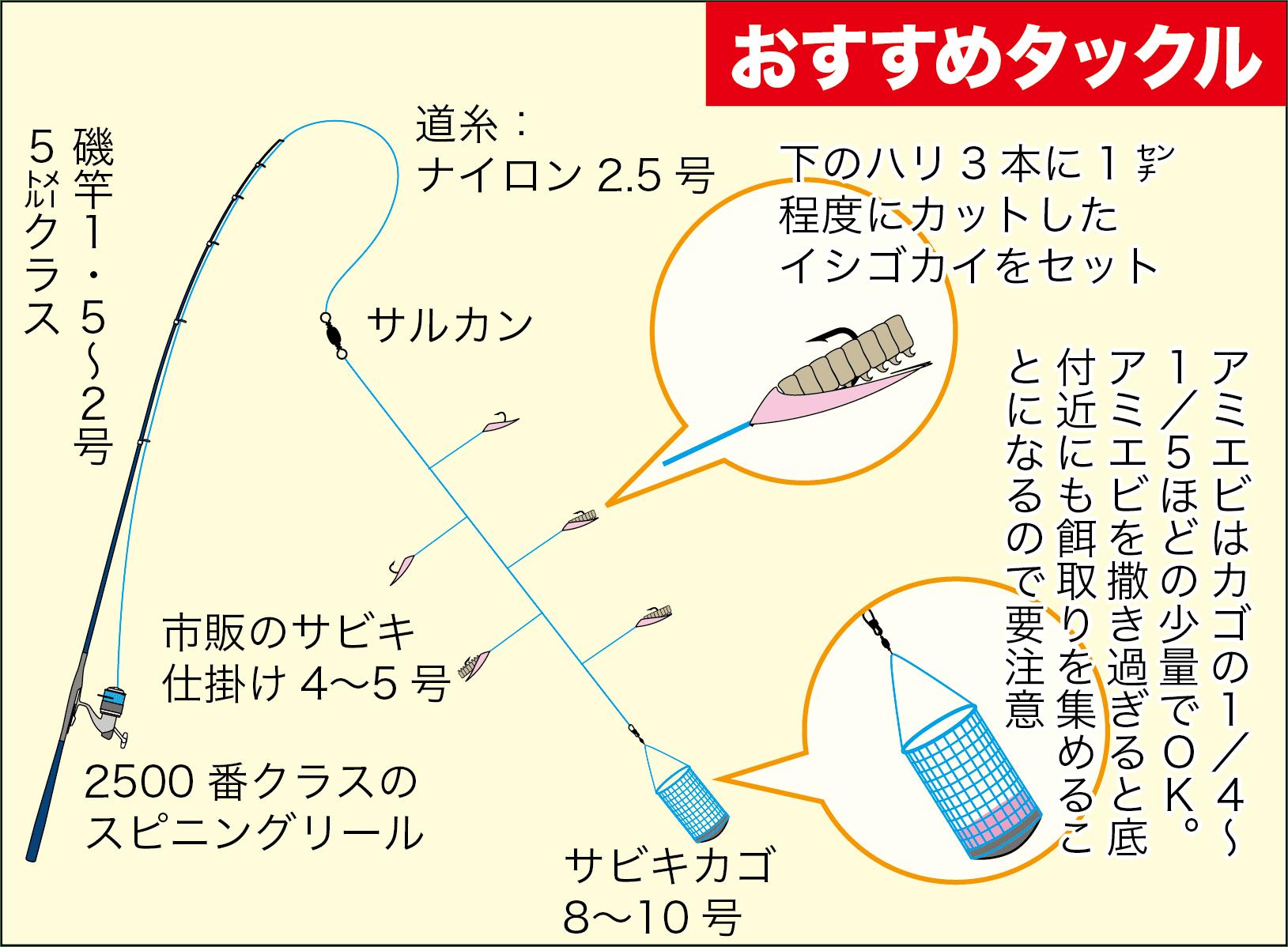 サビキ釣りスズナリ6都志港-7