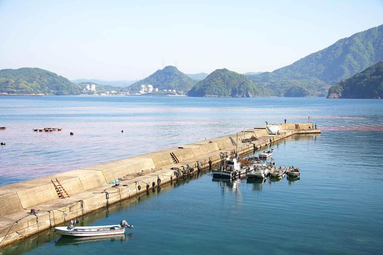 上瀬漁港4