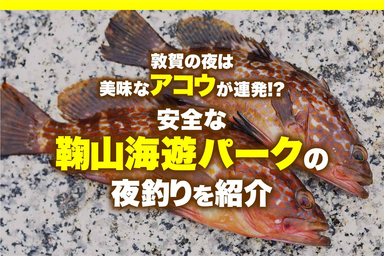 鞠山海遊パークアコウ1