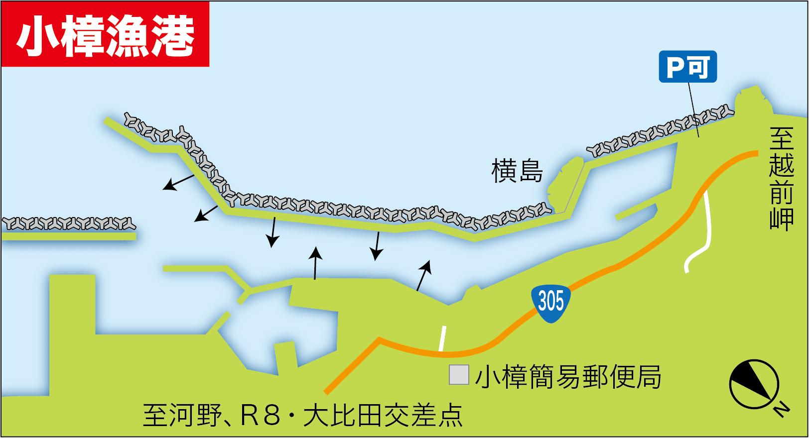 鞠山海遊パークアコウ12
