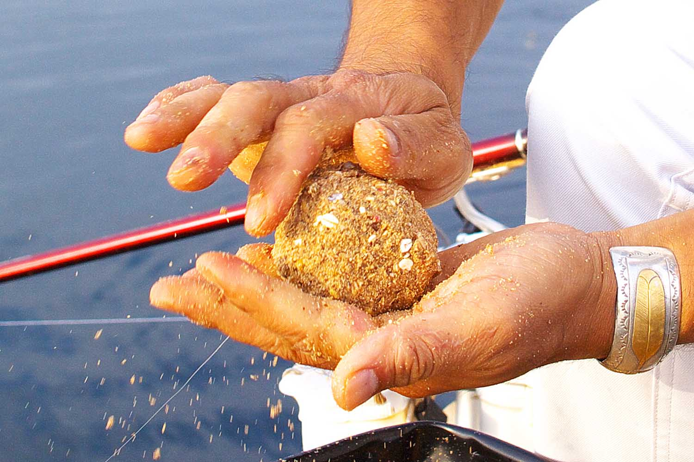 紀州釣りフグ対策6