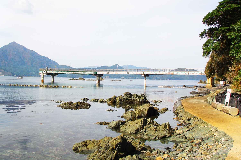 若狭高浜海釣り公園5