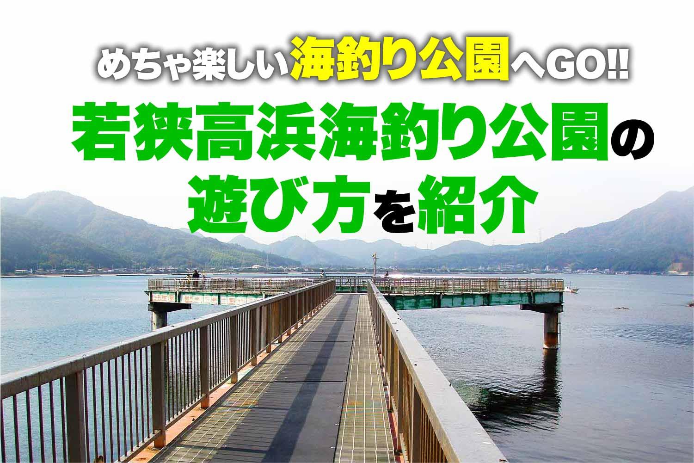 若狭高浜海釣り公園1