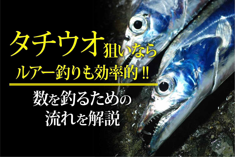 太刀魚 ルアー 釣り