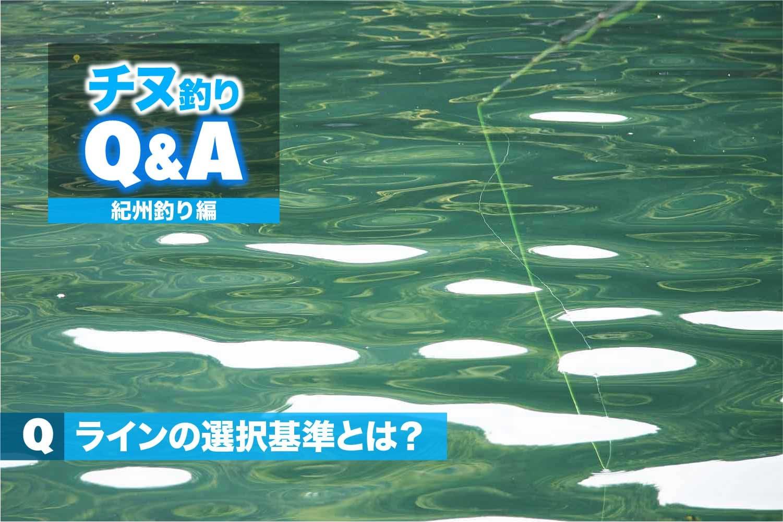 QA紀州釣りライン選択4