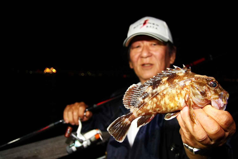 秋波止メバルガシラ夜釣り16