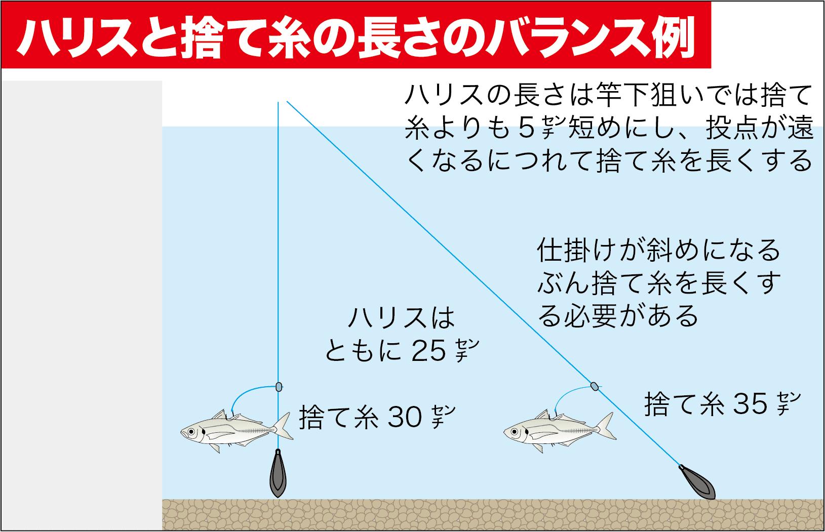 投げアコウ置き竿8