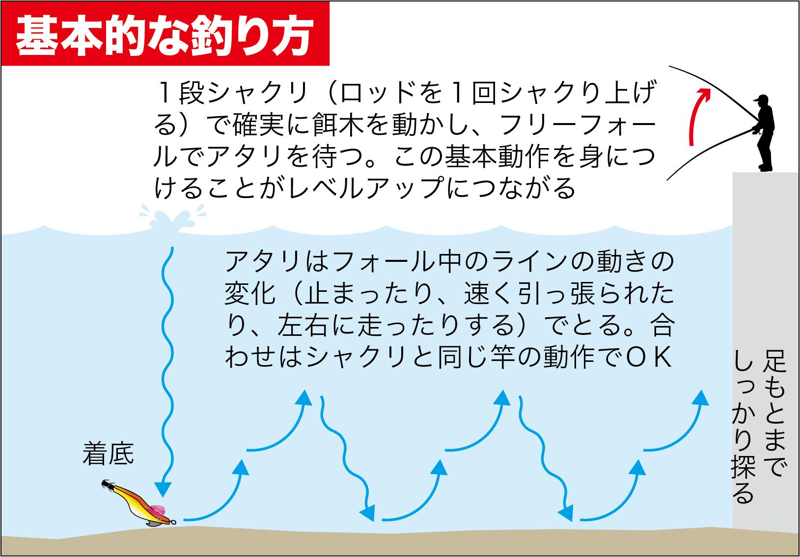エギング+α神子漁港3