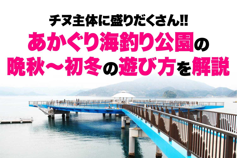 あかぐり海釣り公園の遊び方1