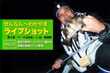 夜釣り師的ヘッドライト選択&泉南の最新メバル事情を紹介|せんなん〜わかやまライブショット第2章Vol.25