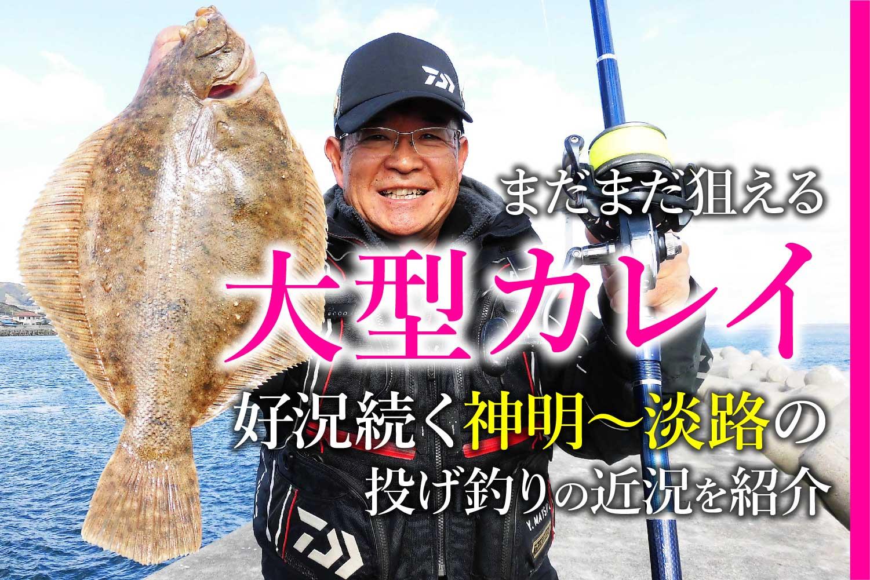 神明〜淡路島投げ釣りカレイ1