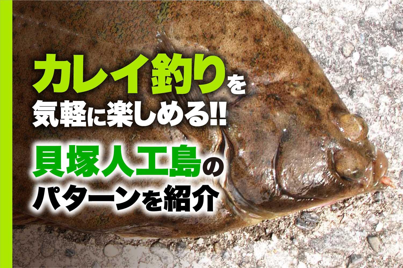 貝塚人工島カレイ1