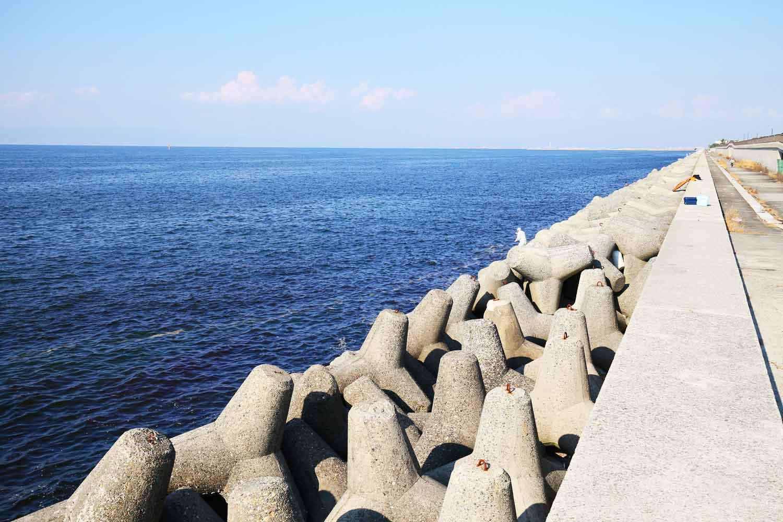 貝塚人工島カレイ7