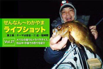 良型が年中無休!? メバルの超ウルトラパラダイス、松山沖・中島での釣りを紹介|せんなん〜わかやまライブショット第2章Vol.27