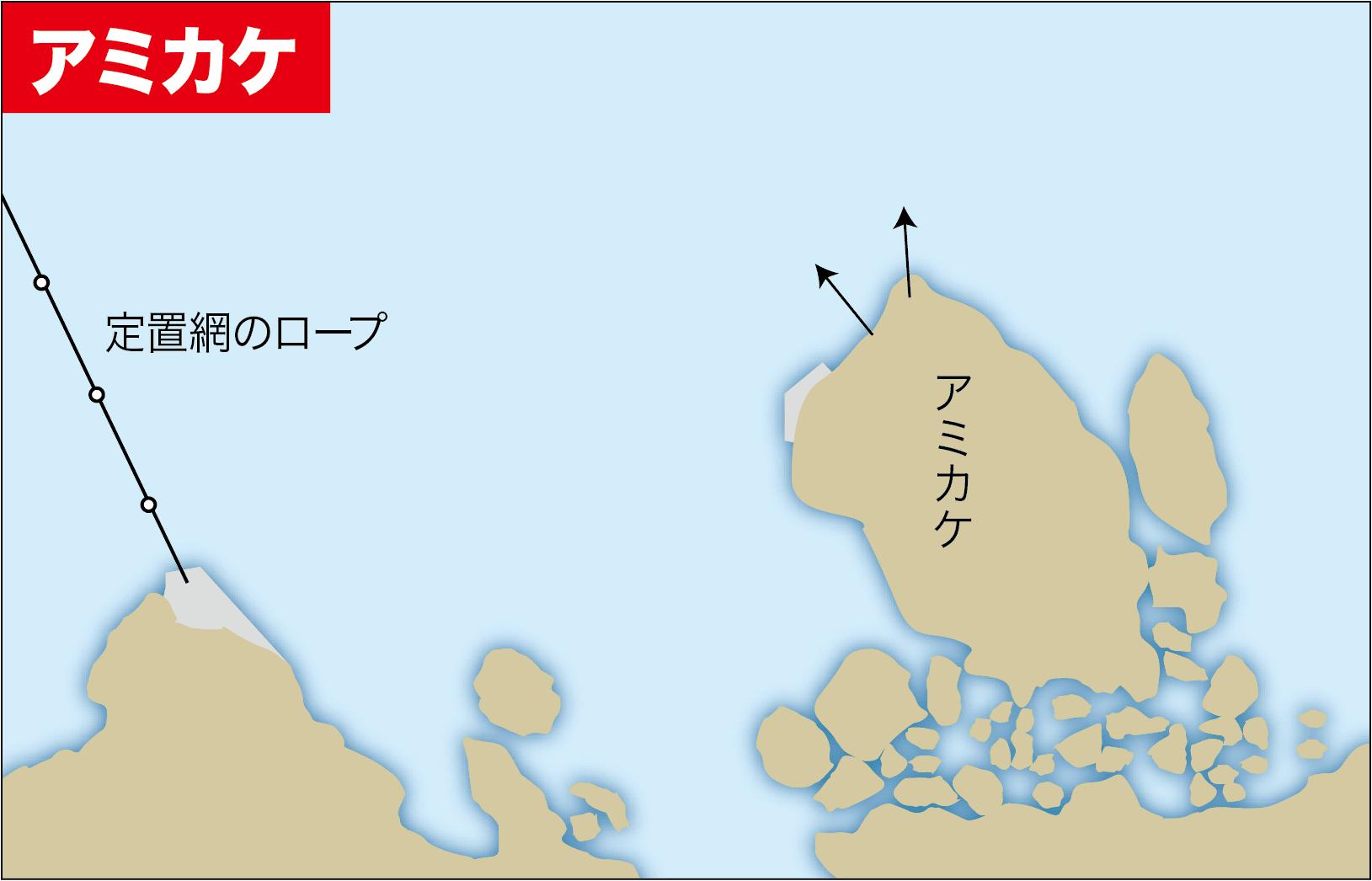キャスターズ串本カワハギ15-18