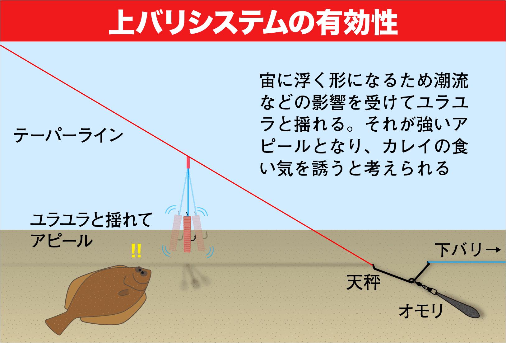 矢野勝彦のカレイ戦略55